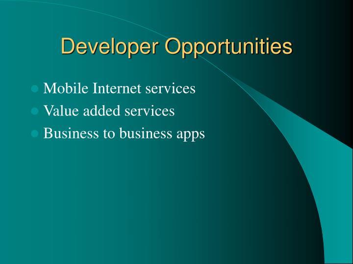 Developer Opportunities