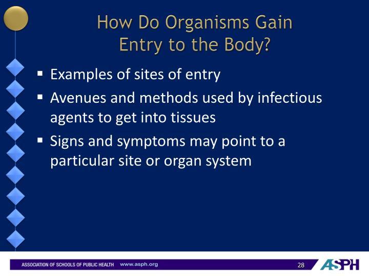 How Do Organisms Gain