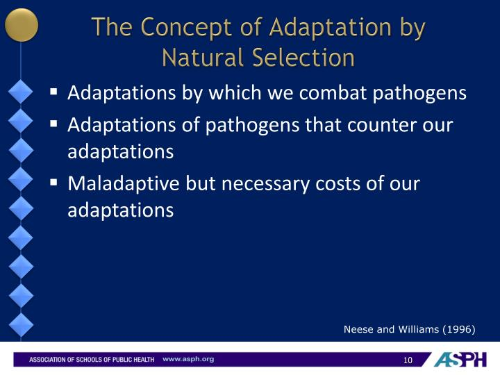 The Concept of Adaptation by Natural Selection
