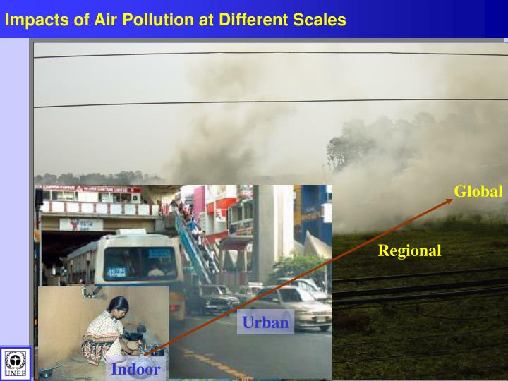 Impacts of Air Pollution at Different Scales