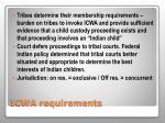 icwa requirements