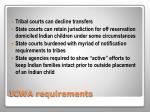 icwa requirements1