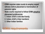 icwa requirements2