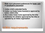 icwa requirements3