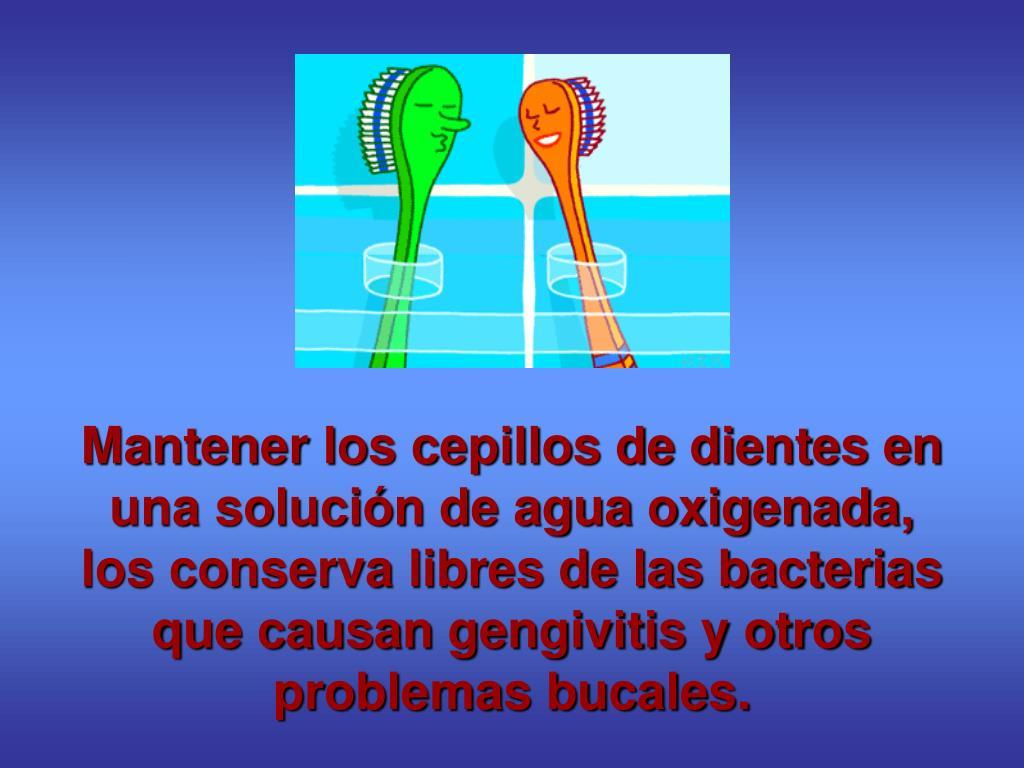 Mantener los cepillos de dientes en una solución de agua oxigenada, los conserva libres de las bacterias que causan gengivitis y otros problemas bucales.
