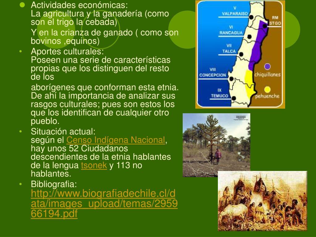 Actividades económicas:                                             La agricultura y la ganadería (como son el trigo la cebada)