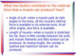 what two factors contribute to the external force that a muscle can produce how