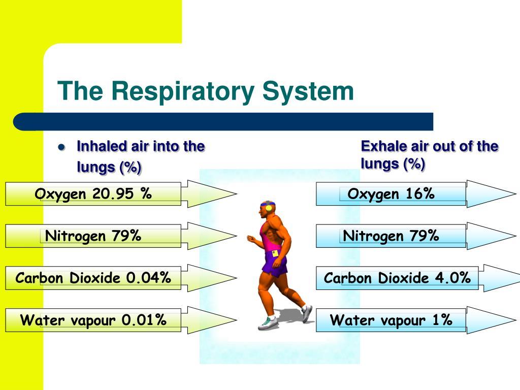 Oxygen 16%