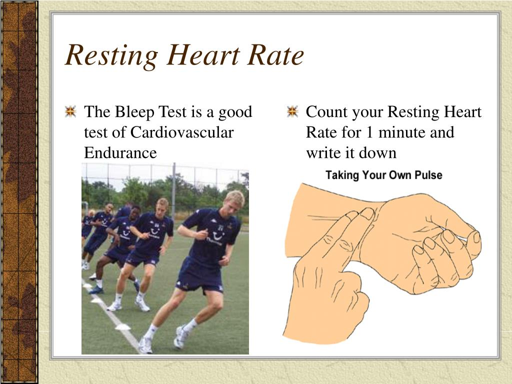 The Bleep Test is a good test of Cardiovascular Endurance