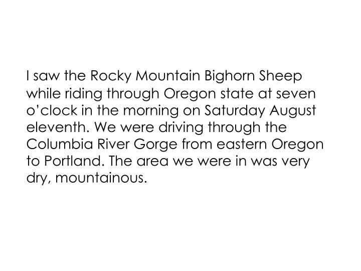 I saw the Rocky Mountain Bighorn Sheep while riding through Oregon state at seven o'clock in the m...