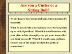 are you a custer or a sitting bull