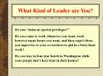 what kind of leader are you26
