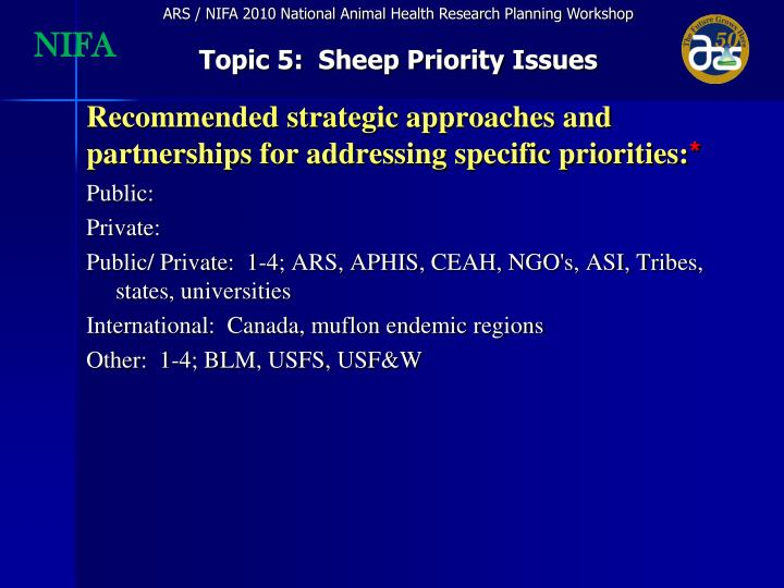 Recommended strategic approaches and partnerships for addressing specific priorities