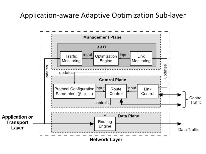 Application-aware Adaptive Optimization Sub-layer