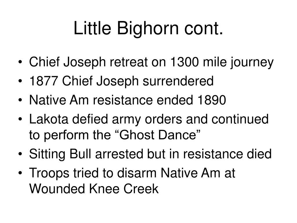 Little Bighorn cont.