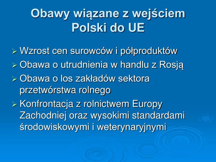 Obawy wiązane z wejściem Polski do UE