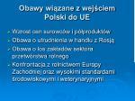 obawy wi zane z wej ciem polski do ue
