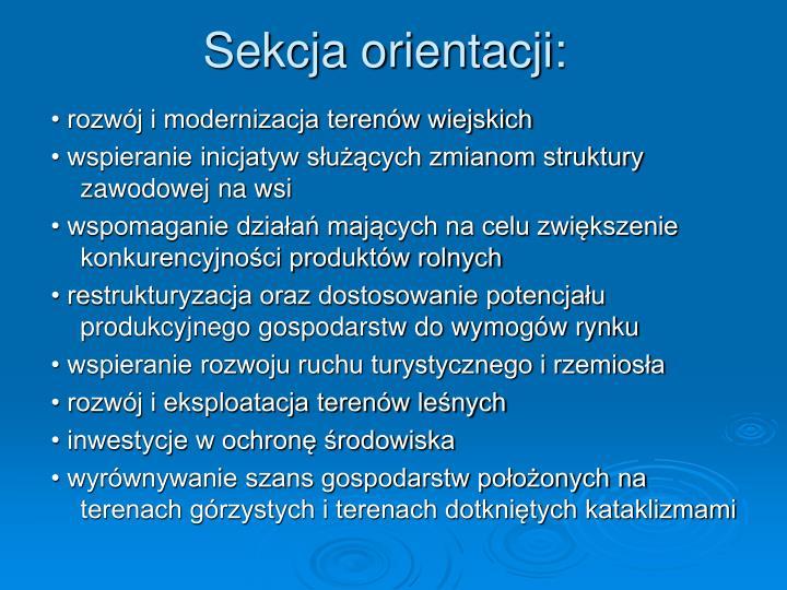 Sekcja orientacji: