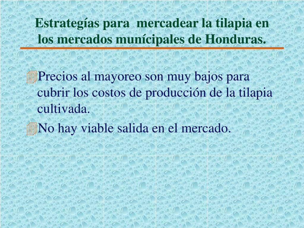 Estrategías para  mercadear la tilapia en los mercados munícipales de Honduras.