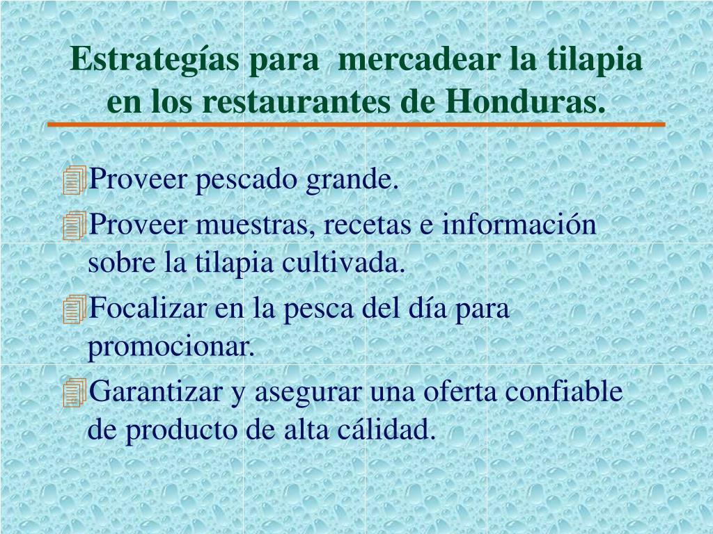 Estrategías para  mercadear la tilapia en los restaurantes de Honduras.