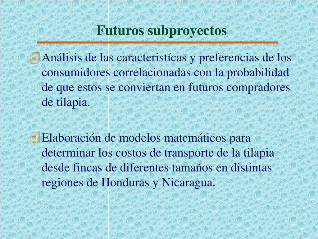 Futuros subproyectos