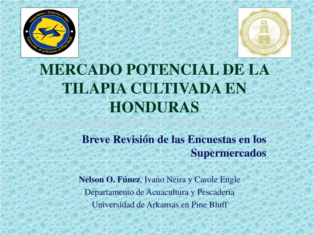 MERCADO POTENCIAL DE LA TILAPIA CULTIVADA EN HONDURAS