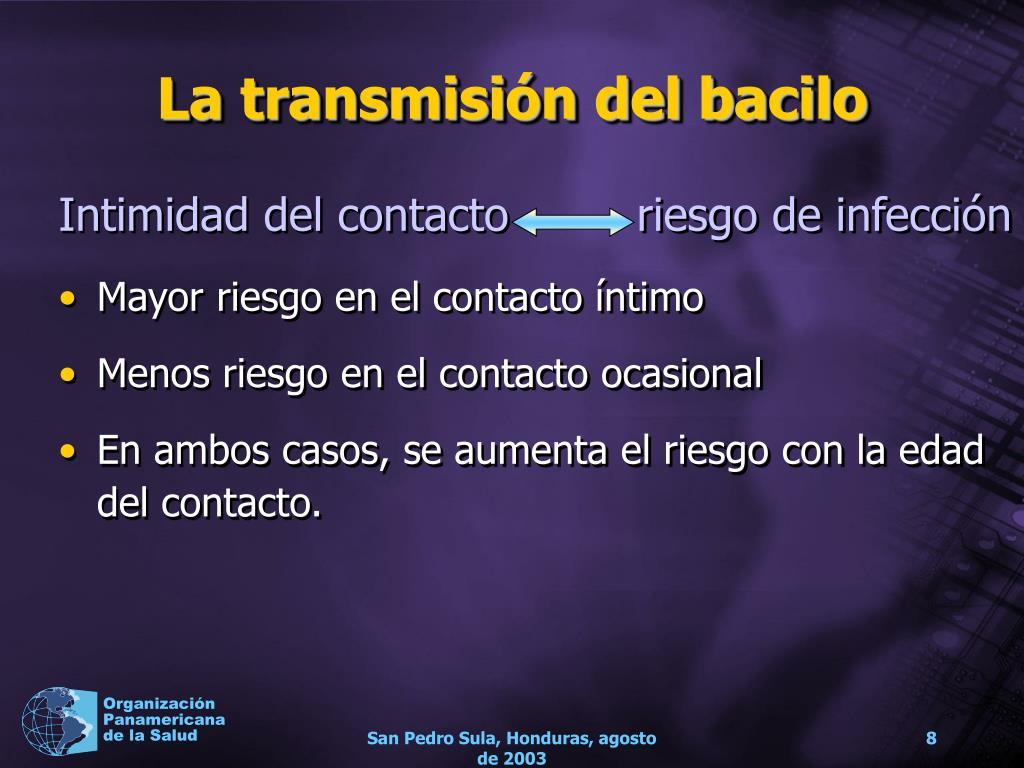 La transmisión del bacilo