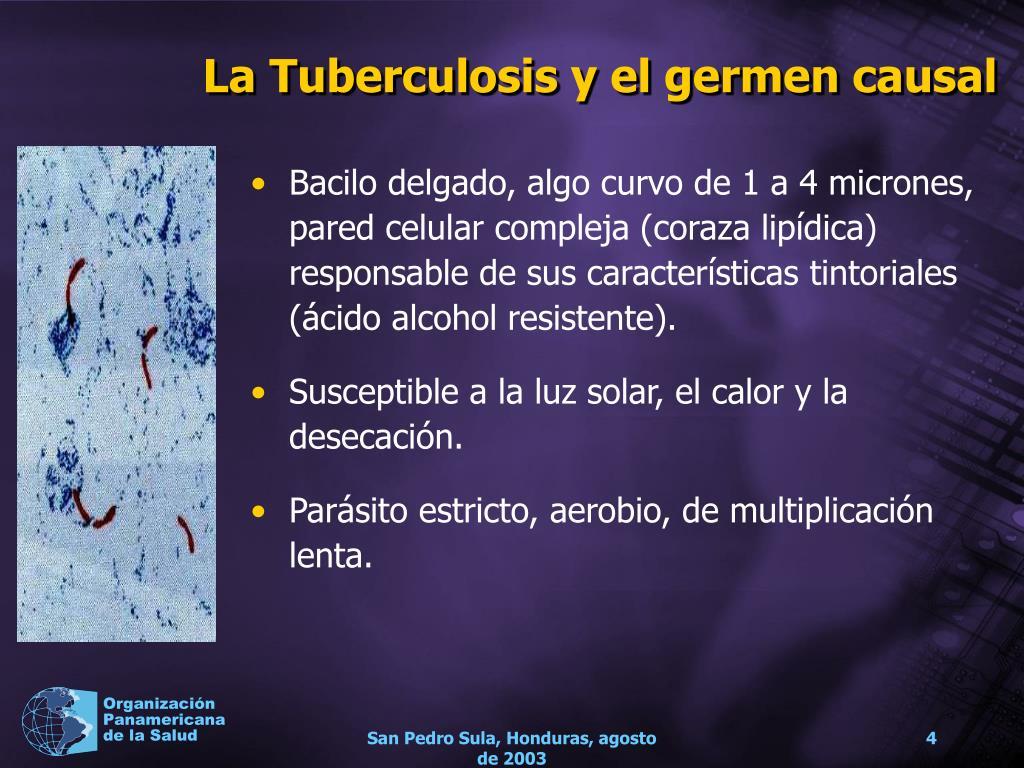La Tuberculosis y el germen causal