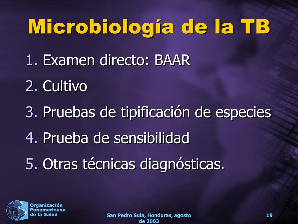 Microbiología de la TB