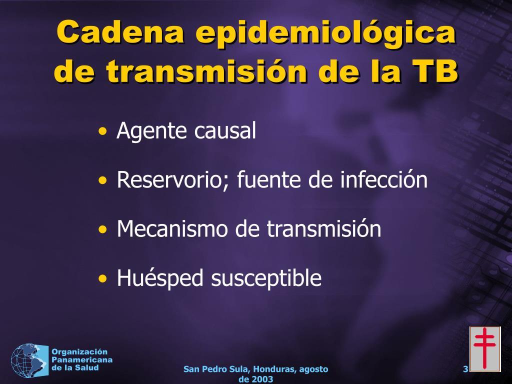 Cadena epidemiológica de transmisión de la TB