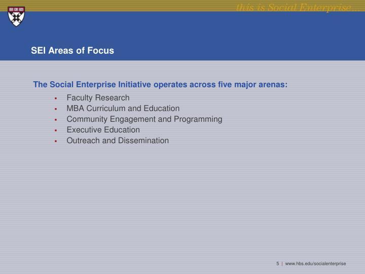 SEI Areas of Focus