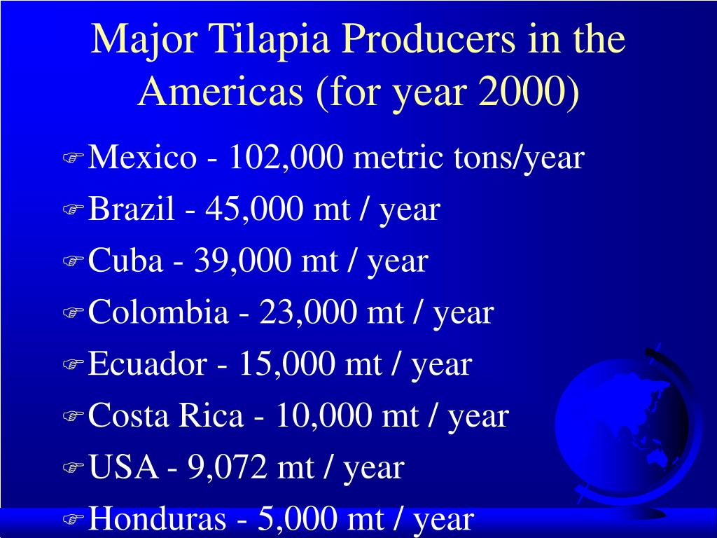 Major Tilapia Producers in the Americas (for year 2000)