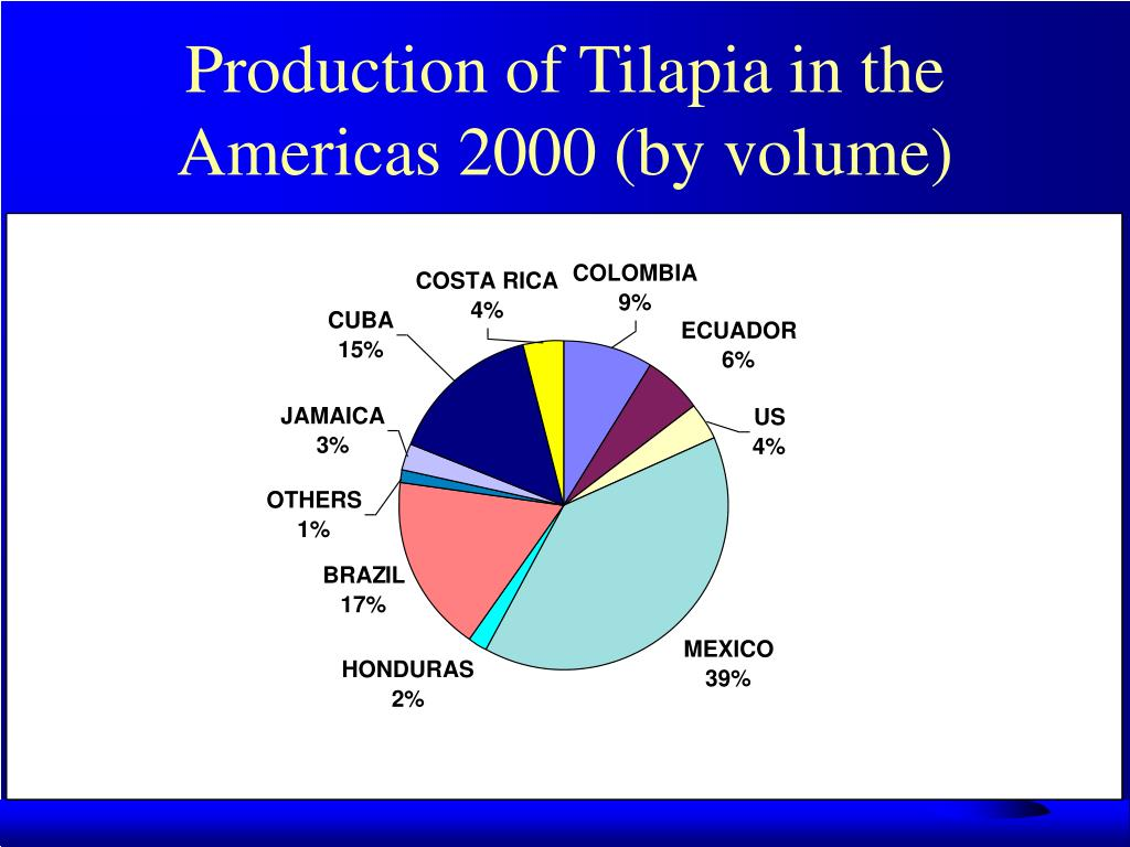 Production of Tilapia in the Americas 2000 (by volume)