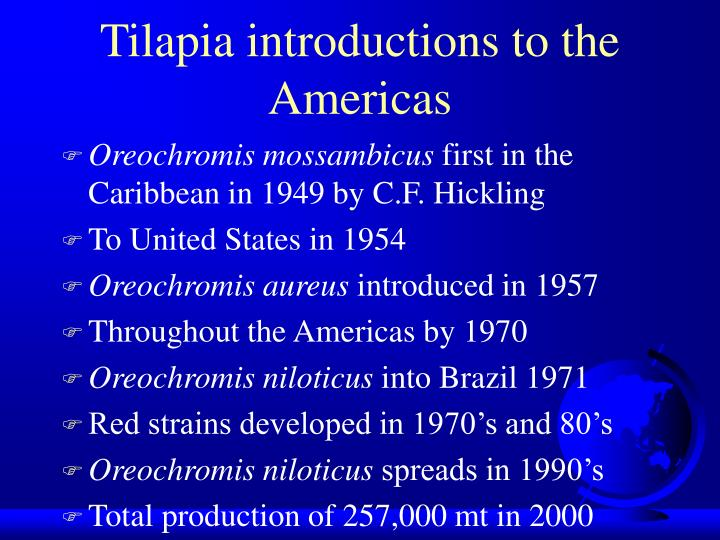 Tilapia introductions to the americas l.jpg