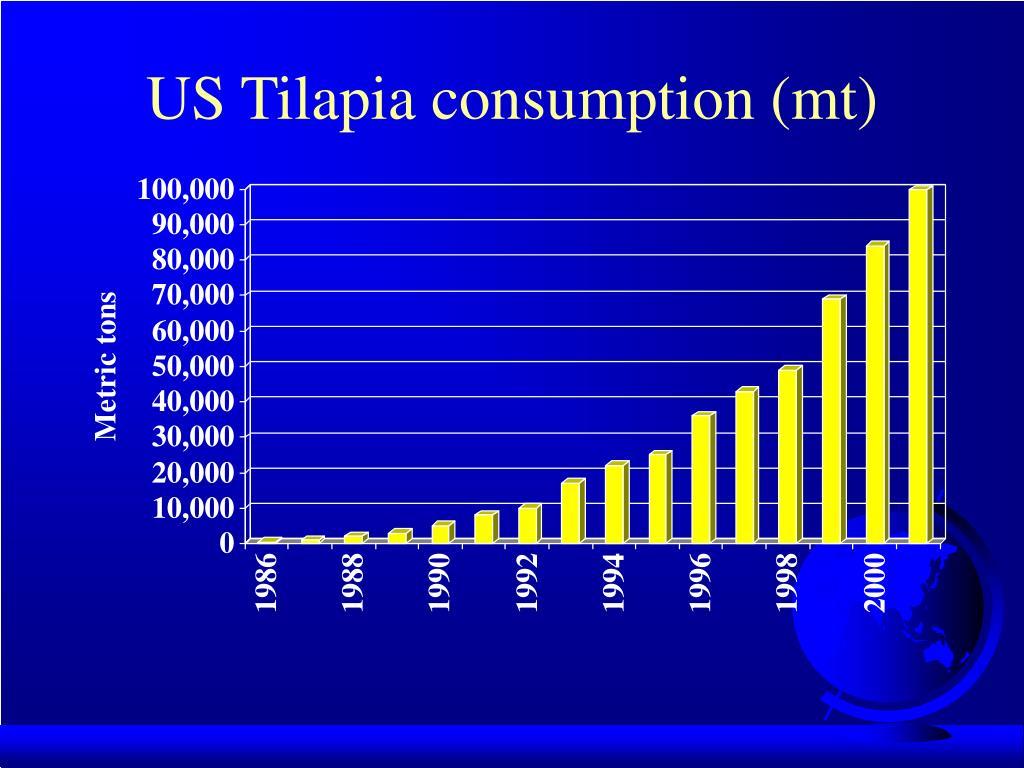 US Tilapia consumption (mt)