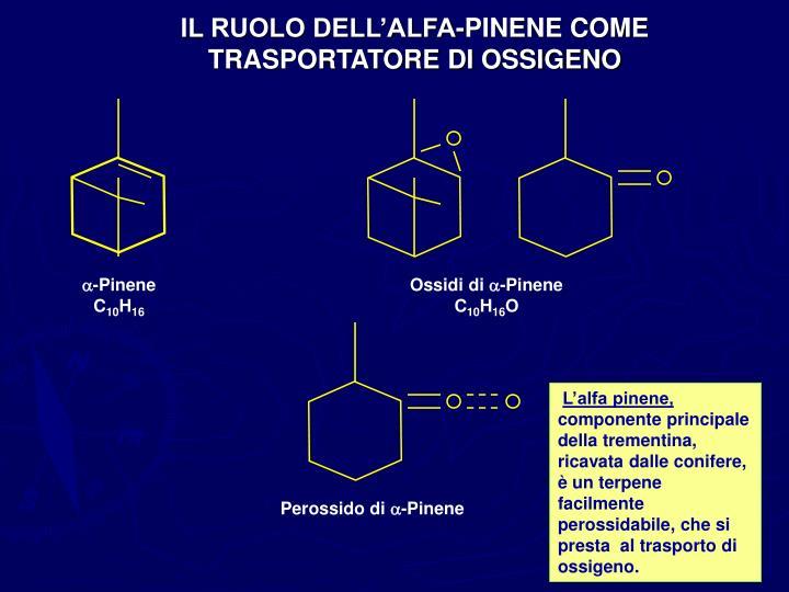 IL RUOLO DELL'ALFA-PINENE COME
