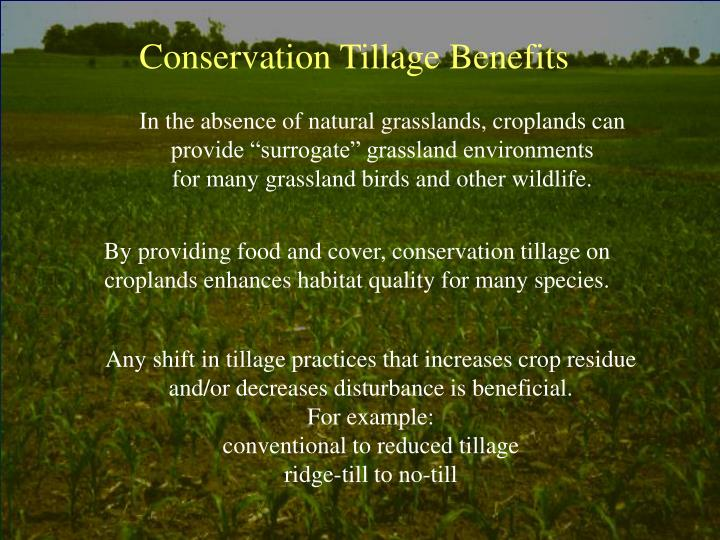 Conservation Tillage Benefits