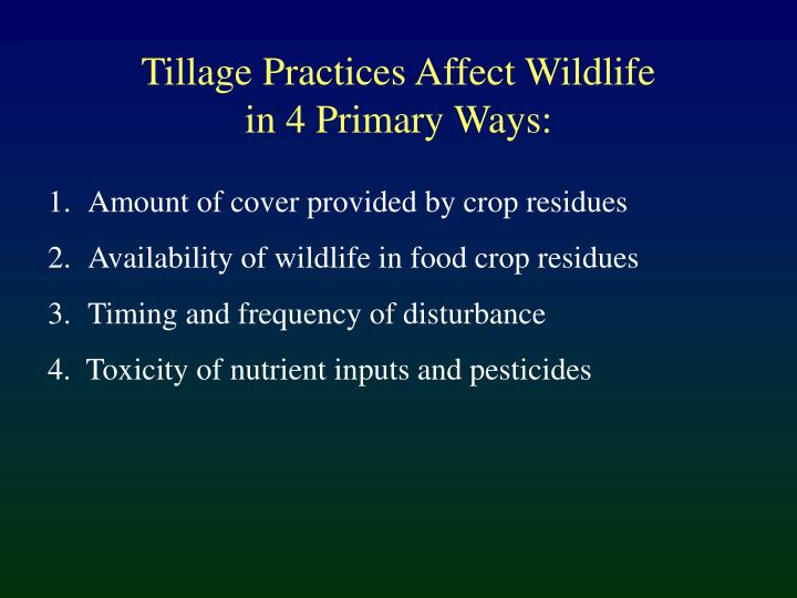 Tillage Practices Affect Wildlife