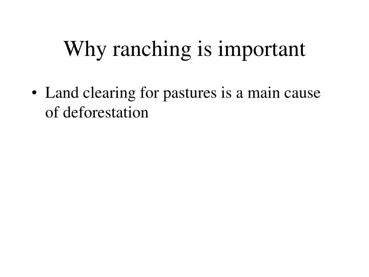 Why ranching is important3 l.jpg