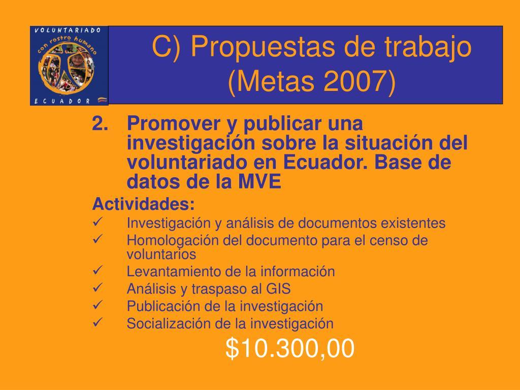 C) Propuestas de trabajo (Metas 2007)