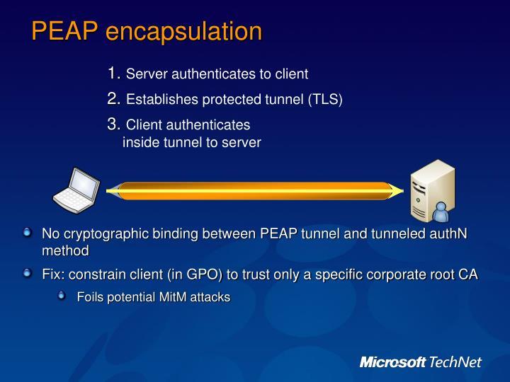PEAP encapsulation