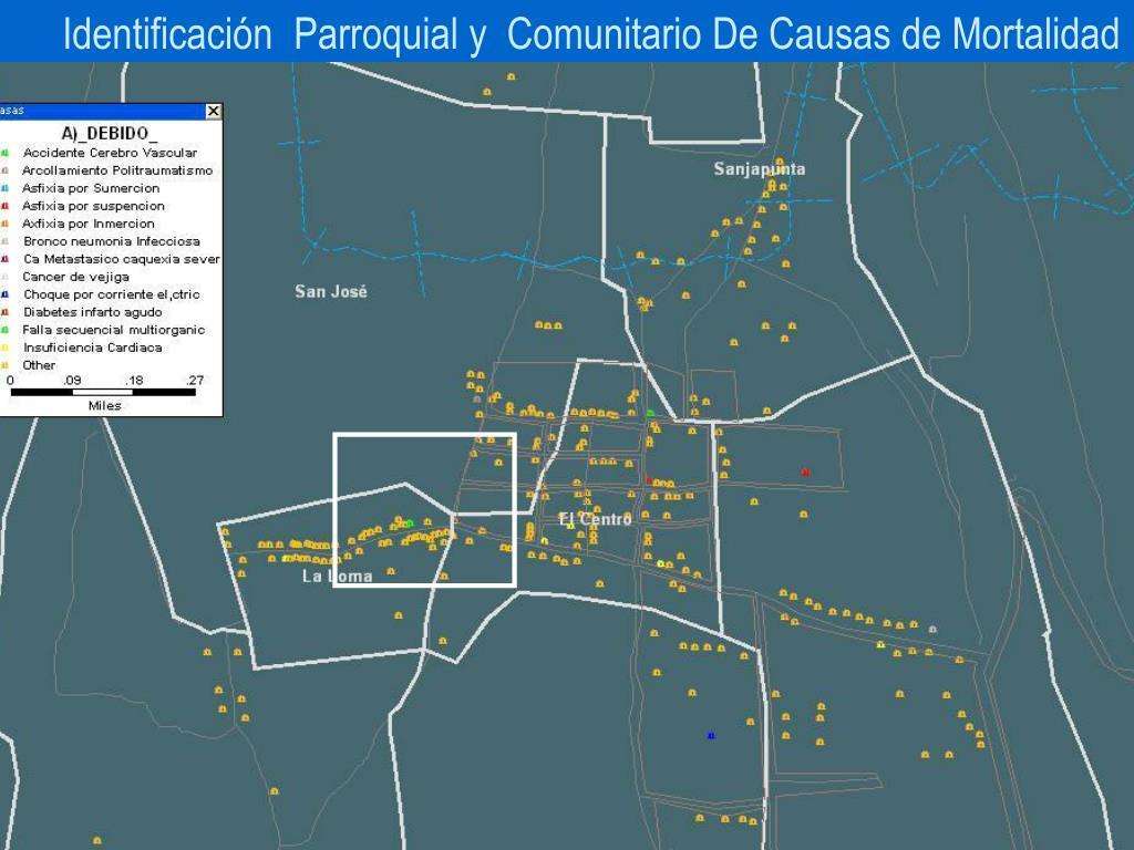 Identificación  Parroquial y  Comunitario De Causas de Mortalidad