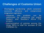 challenges of customs union22