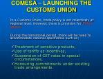 comesa launching the customs union18