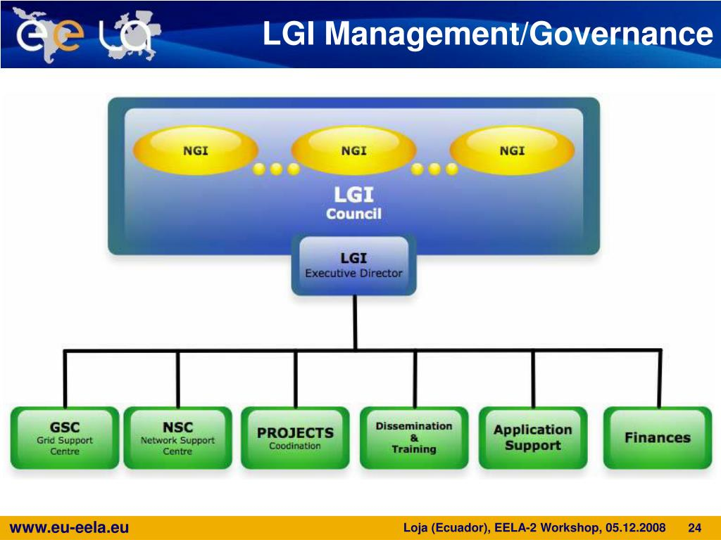 LGI Management/Governance
