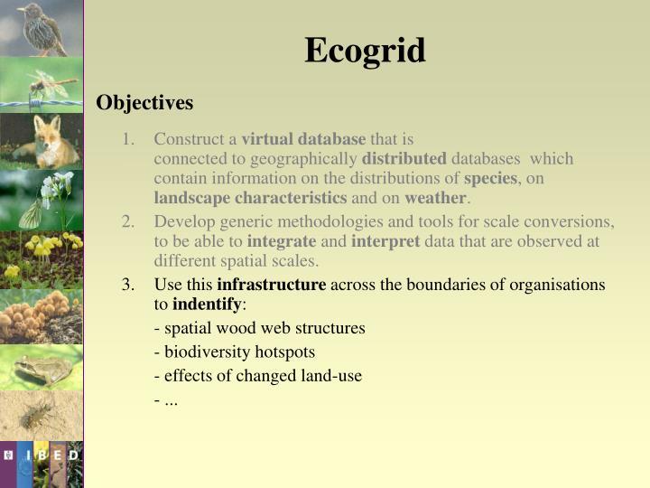 Ecogrid