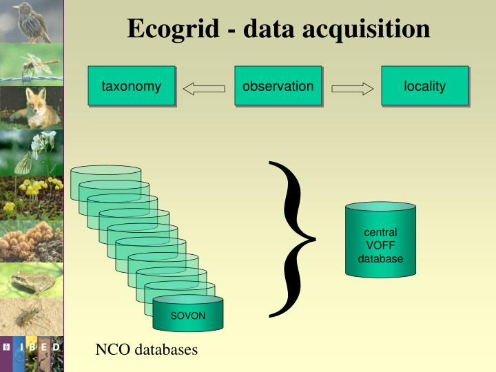 Ecogrid - data acquisition