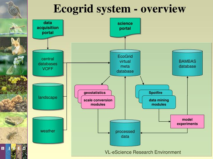Ecogrid system - overview