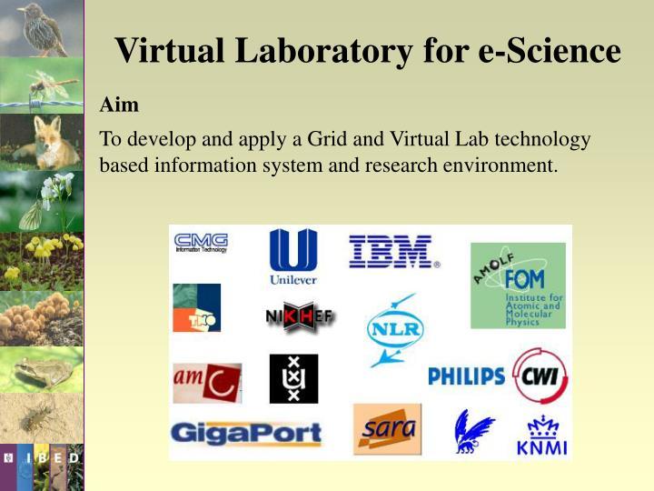 Virtual Laboratory for e-Science