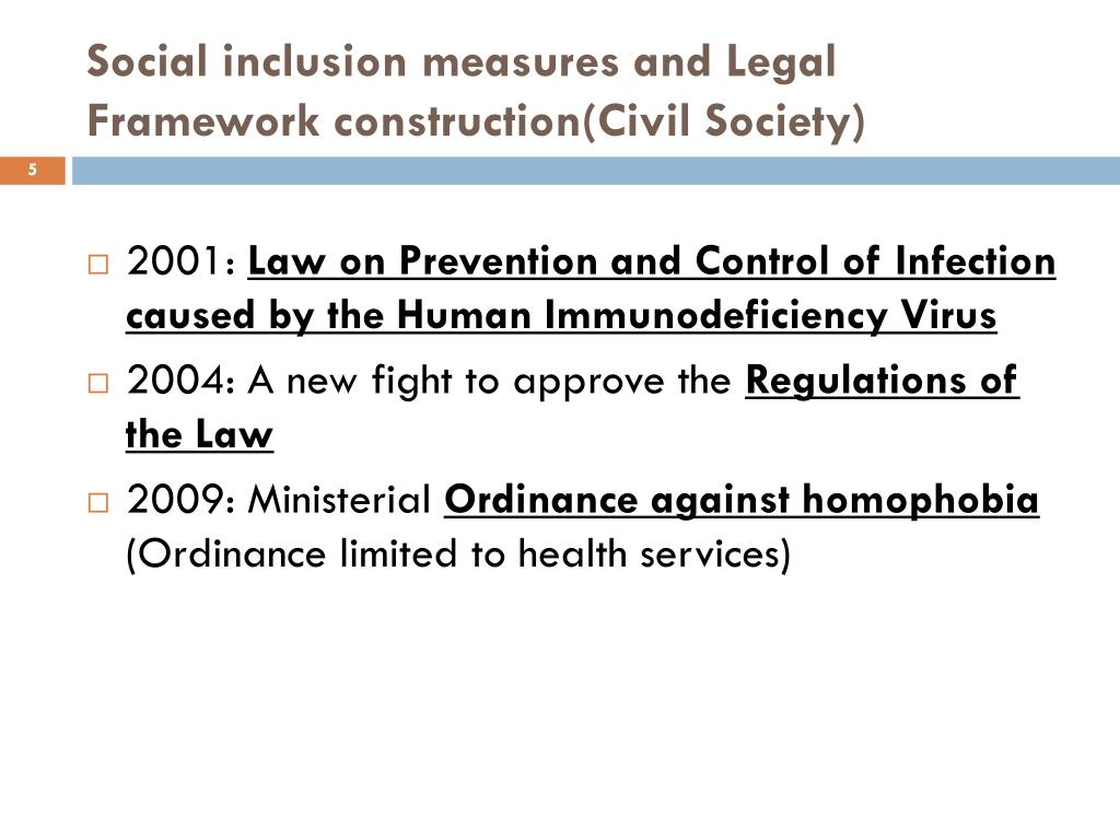 Social inclusion measures and Legal Framework construction(Civil Society)